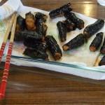 cuisine japonaise 11